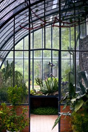 Les légumes bio se font aussi pousser en intérieur