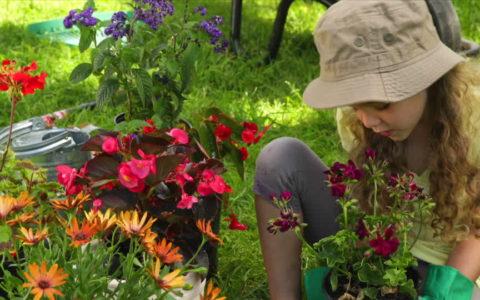 Quel cadeau pour les amateurs de jardinage ?