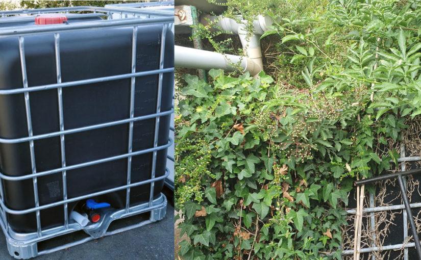 Comment récupérer l'eau de pluie pour votre jardin
